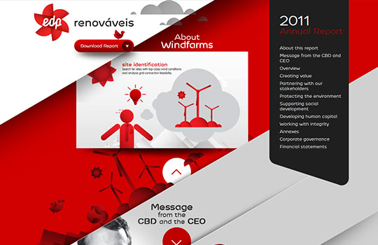 Edprenovaveis 2011 Annual Report